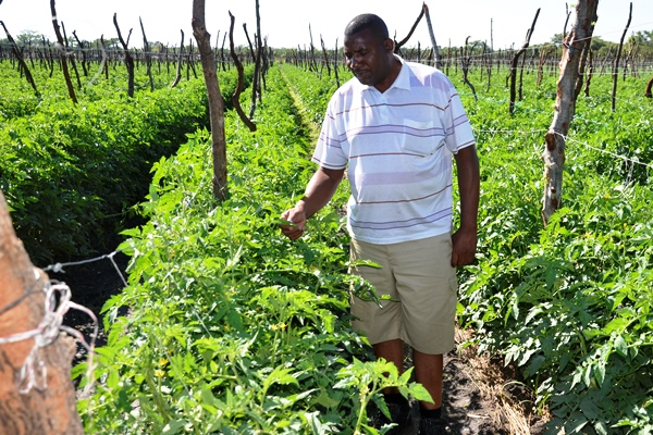 Agrarians earn high using conservation agribusiness