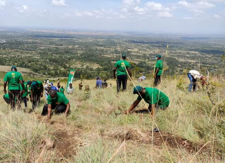 Del Monte Kenya Celebrate Earth Day by Creating new environmental Action tool